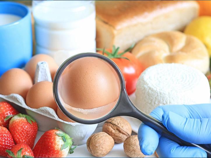食品药品领域